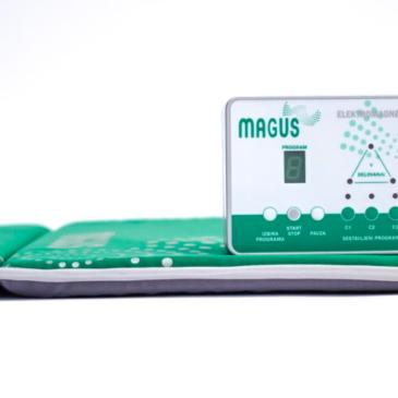 Družinsko podjetje MAGUS